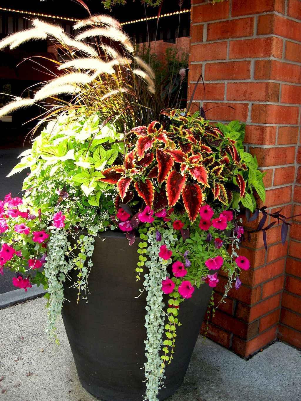 Best Summer Container Garden Ideas 44 Room A Holic